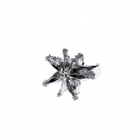 Кольцо Ester Bijoux LF20R- S BW