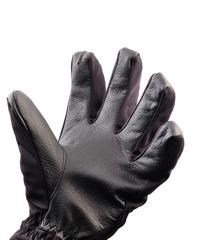 Перчатки Dakine Raptor Glove Black
