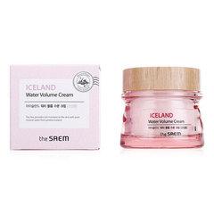Saem Iceland Hydrating Water Volume Cream For Dry Skin - Легкий увлажняющий гелевый крем минеральный для сухой кожи