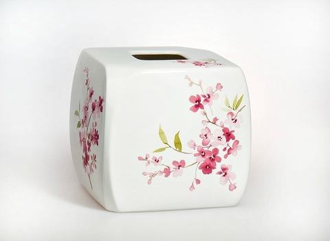 Салфетница Croscill Living Cherry Blossoms