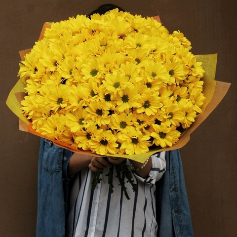 Хризантемы кустовые желтые Bacardi Synny от 3шт