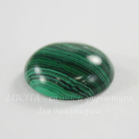 Кабошон круглый Малахит (искусств), 16 мм