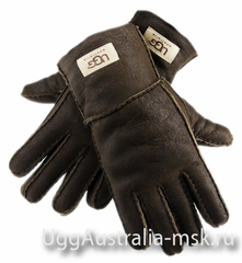 Ugg Glove Brown