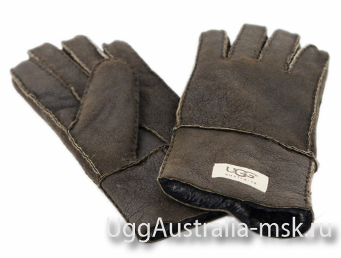Ugg Glove Brown