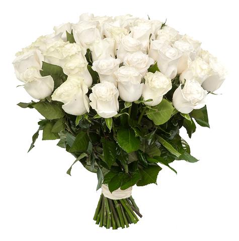 Голландские белые розы