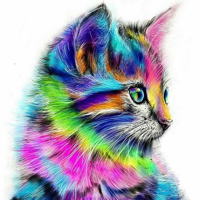 Картина раскраска по номерам 30x40 Разноцветный котенок ...