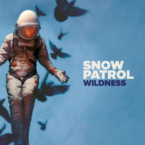 Snow Patrol / Wildness (LP)