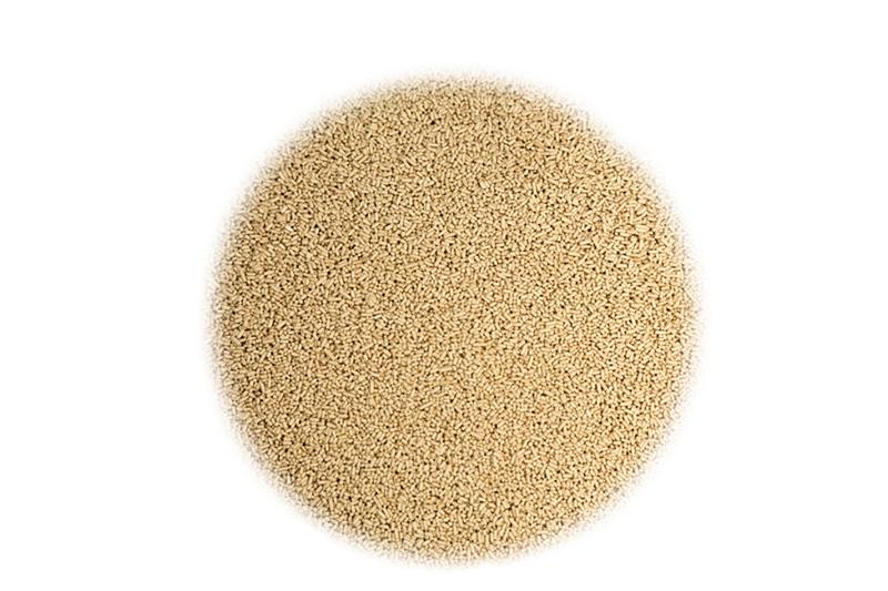 Дрожжи спиртовые Дрожжи спиртовые для сахарной браги DistilaMax® SR 10153_G_1528230754738.jpg