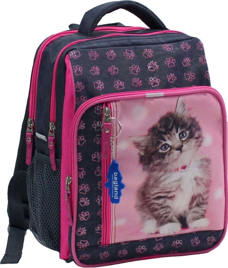 Школьные рюкзаки Рюкзак школьный Bagland Школьник 8 л. Серый (кот 65) (00112702) 3901fd4d57b45719316402cd967ab8fa.jpg