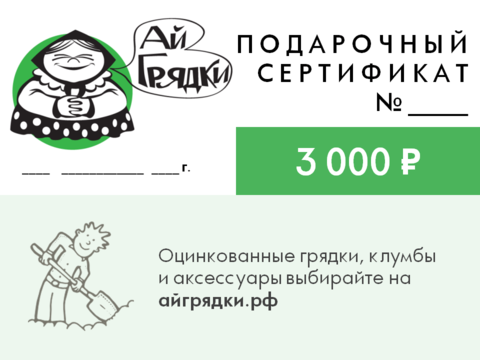 Подарочный сертификат АЙГРЯДКИ! на 3000 руб.