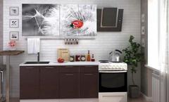 Кухня с фотопечатью «Одуванчик» 1,6 м
