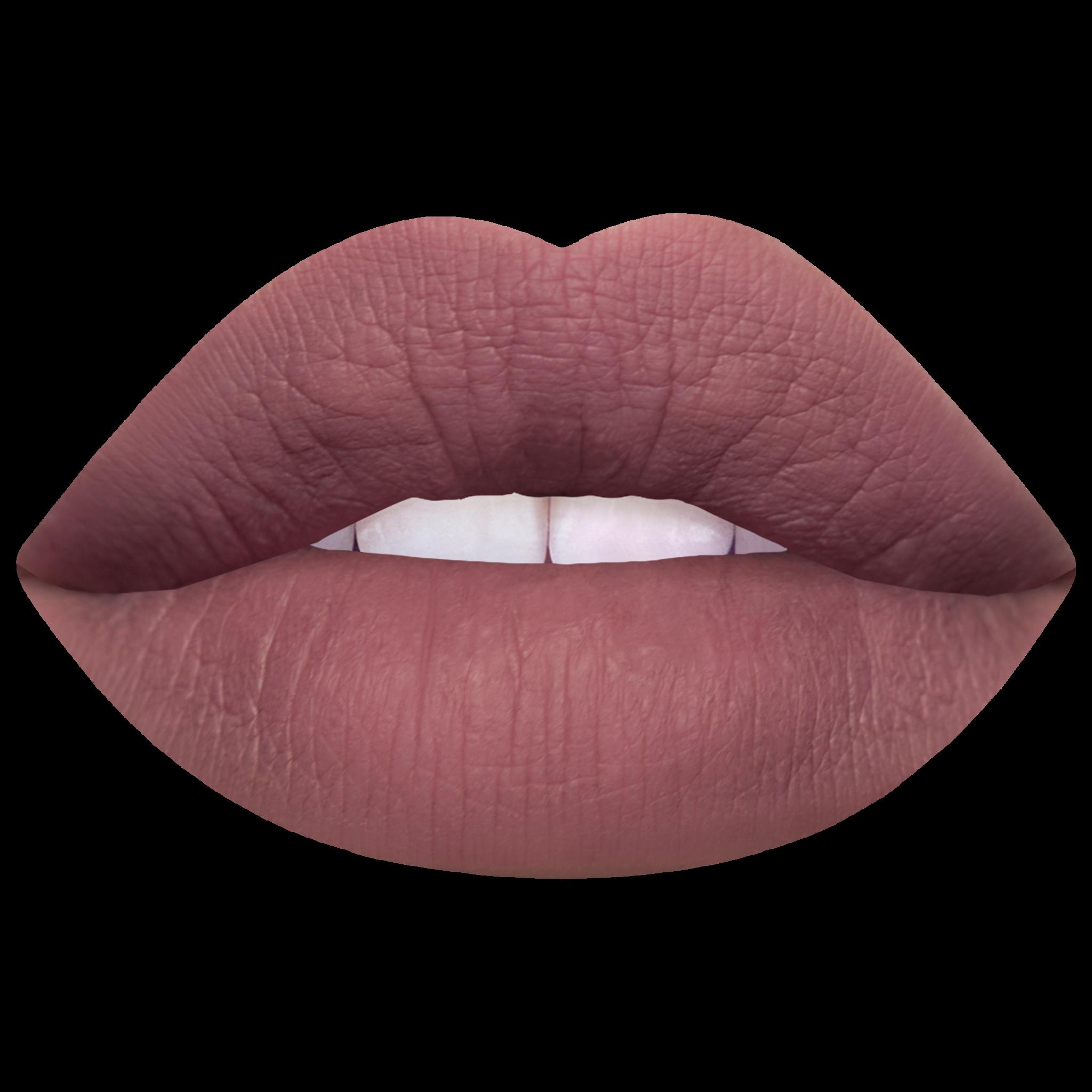Лимитированный наборы для губ Mini Lip Kit