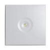 Потолочный светильник аварийного освещения IP44 ZONESPOT II – с оптикой MIDBAY