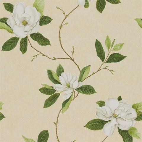 Обои Sanderson Parchment Flowers DPFWSW102, интернет магазин Волео