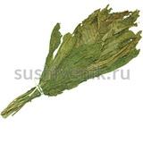 Веник травяной из хрена
