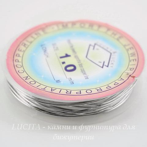Проволока латунная 1 мм, цвет - платина, примерно 2,5 метра