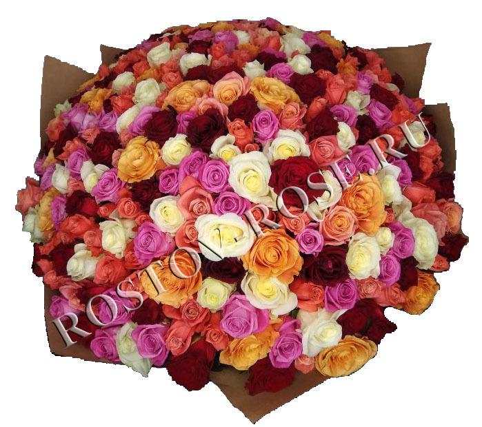 301 МИКС 7 цветов