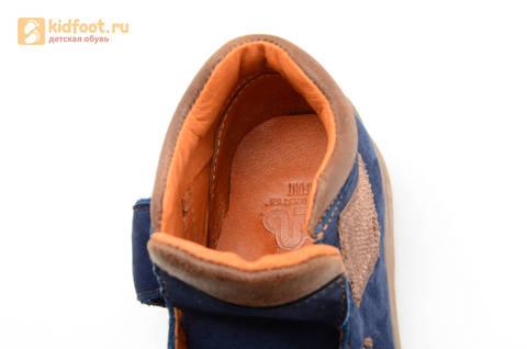 Ботинки для мальчиков кожаные Лель (LEL) на липучке, цвет синий. Изображение 14 из 16.