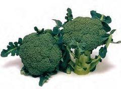 Брокколи Маратон F1 семена капусты брокколи, (Sakata / Саката) МАРАТОН_F1_семена_овощей_оптом.jpg