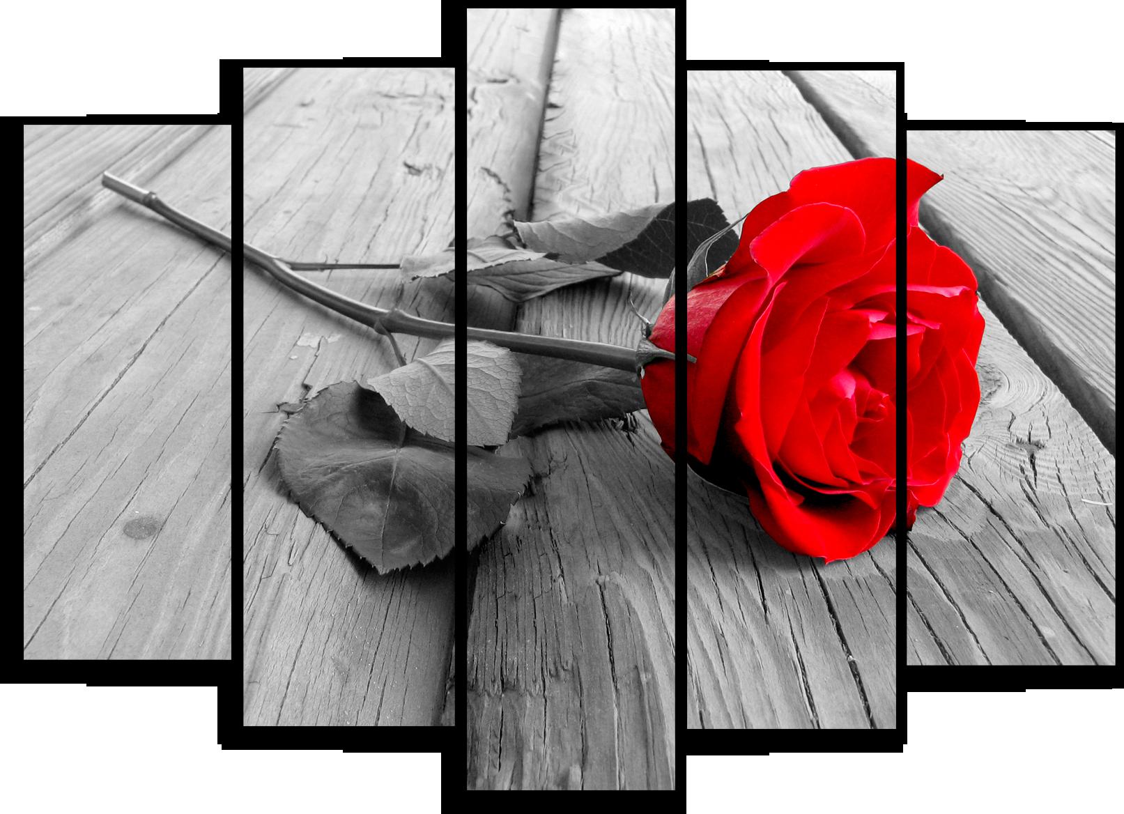 """Модульные картины Модульная картина """"Красное на черно-белом"""" М74.png"""