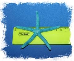 Синяя морская звезда Фингер