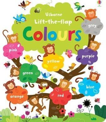 Kitab Lift the Flap Colours Book | Felicity Brooks