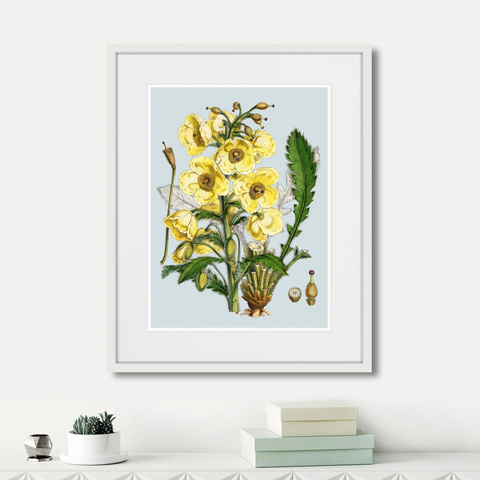 Уолтер Гуд Фитч - Himalaya Plants Yellow Flower, 1869г.