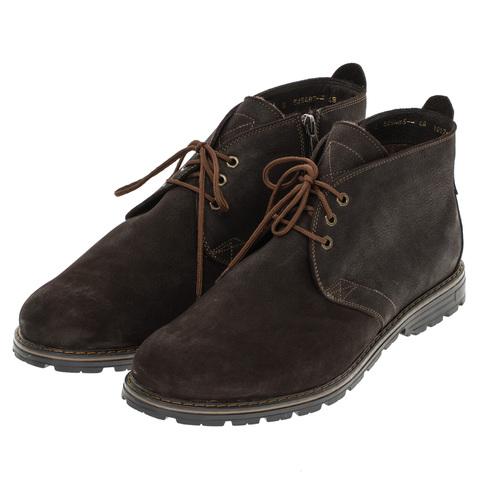 566483 ботинки мужские коричневые байка. КупиРазмер — обувь больших размеров марки Делфино