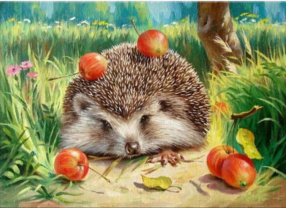 Картина раскраска по номерам 30x40 Ежик с яблоками– купить ...