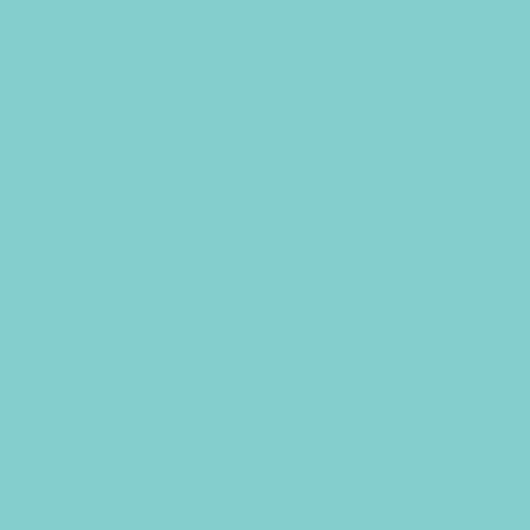 Фон бумажный Superior 55 Alpine 1,35х6м цвет альпы