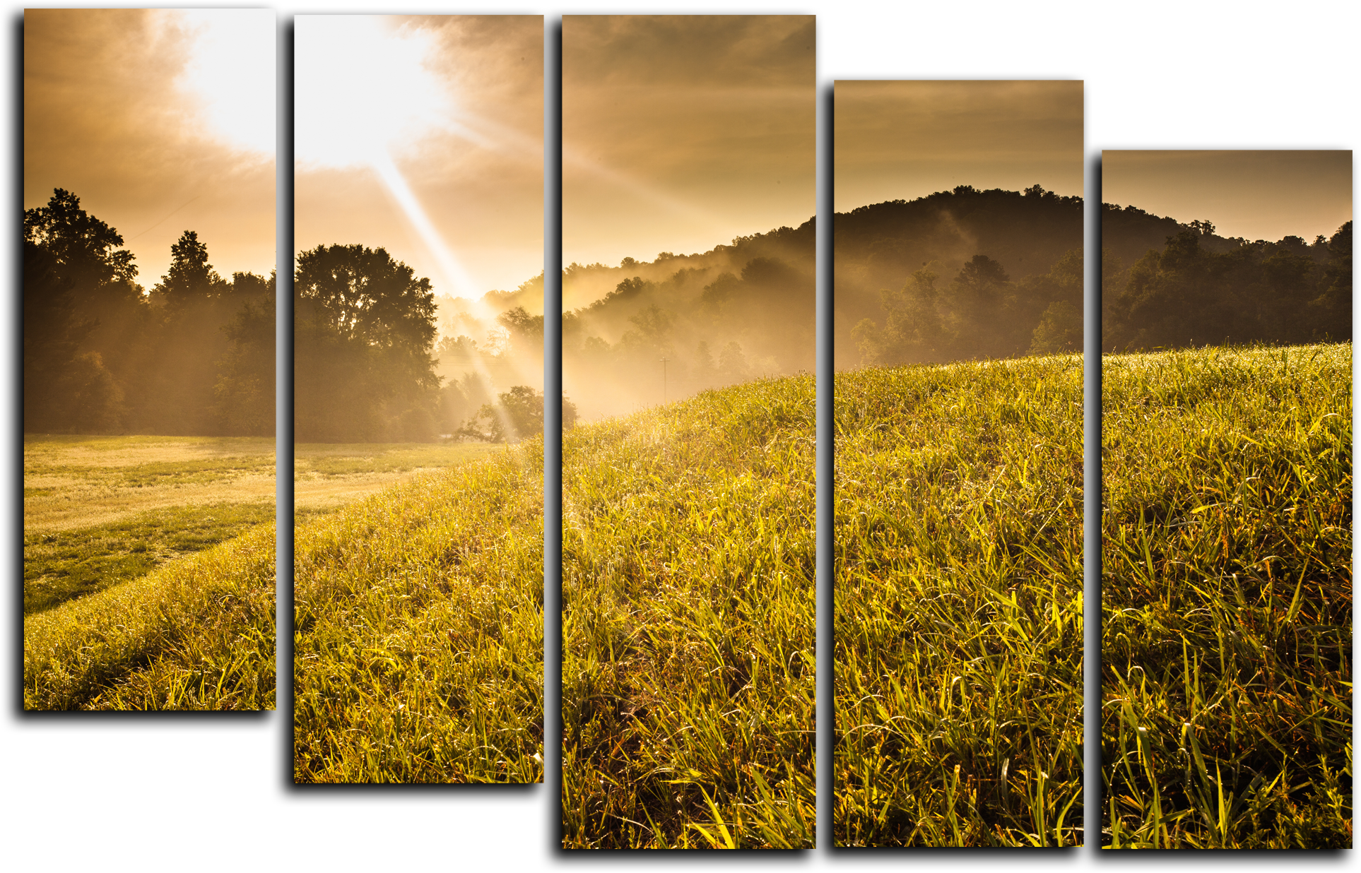 """Природа Модульная картина """"Первые лучи солнца"""" М578.png"""