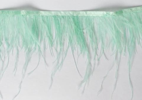 Тесьма  из перьев страуса h 10-15 см., ментол