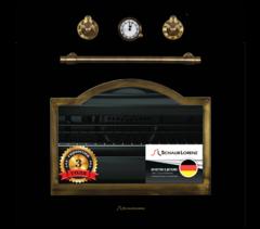 Встраиваемый духовой шкаф Schaub Lorenz SLB EA6860