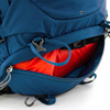 Картинка рюкзак туристический Osprey Kestrel 48 Picholine Green