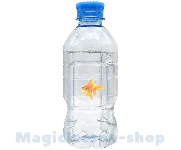 Появление рыбки в бутылке