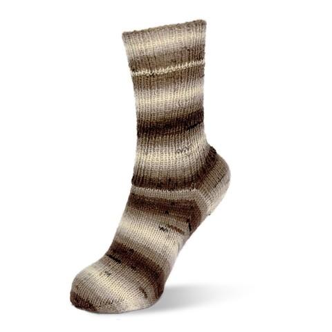 Носочная пряжа Rellana Flotte Socke Degrade 1465 купить