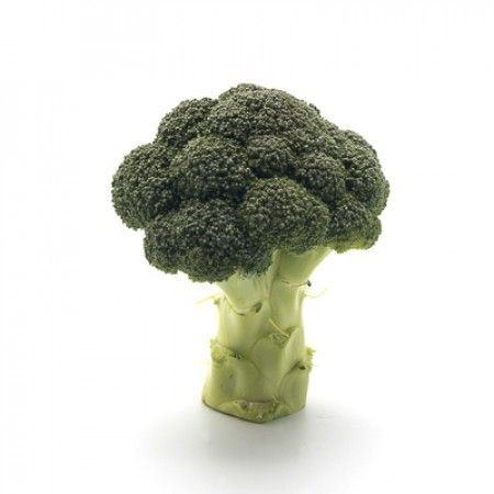 Брокколи Орантес F1 семена капусты брокколи, (Rijk Zwaan / Райк Цваан) ОРАНТЕС_F1_семена_овощей_оптом.jpg