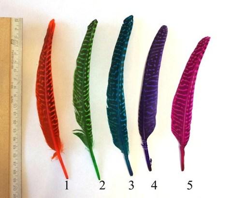 Перо декоративное ,  длина ок. 14-20 см. (выбрать цвет)