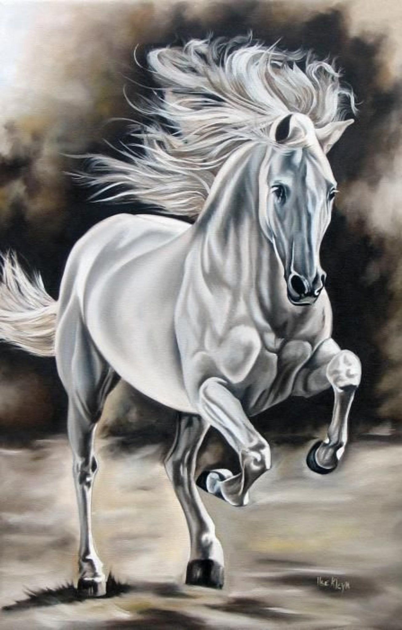 Картина раскраска по номерам 30x40 Белый конь– купить в ...