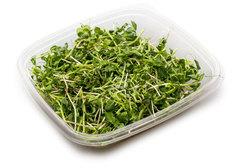 Салатный микс микрозелень № 1, 70г