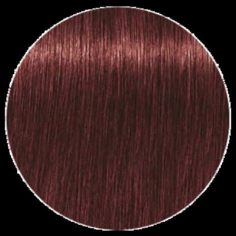 Schwarzkopf Igora Royal High Power Browns B-9 (Коричневый фиолетовый) -  Краска для волос