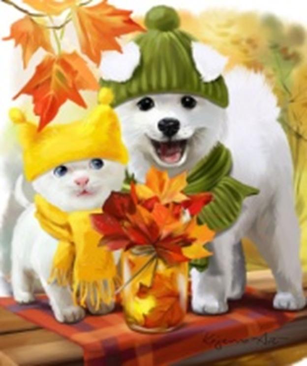 Картина раскраска по номерам 40x50 Щенок и котенок осенью ...