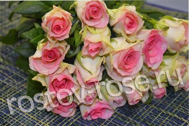 Букет 101 местная бело-розовая роза