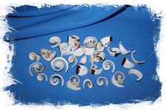 Завитки морских ракушек с дыркой для поделок и бижутерии