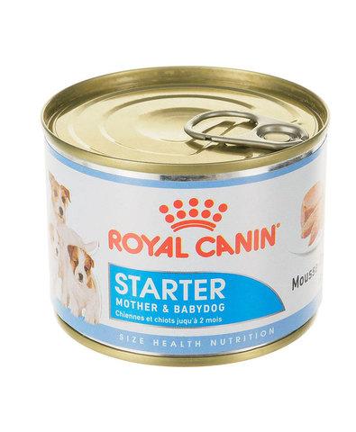Royal Canin Starter Mousse консервы для щенков 195 г