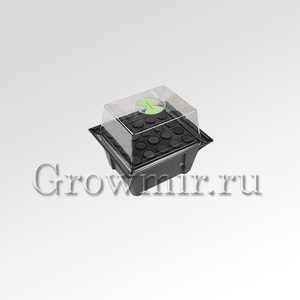 GrowPlant 20 Site