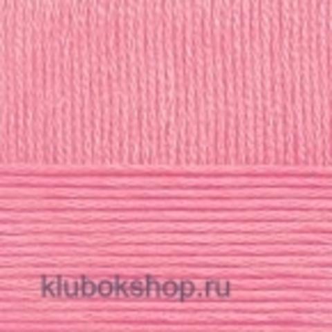 Пряжа Зимняя премьера (Пехорка) 21 Брусника - купить в интернет-магазине недорого klubokshop.ru