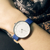 Купить Наручные часы Skagen SKW2172 по доступной цене