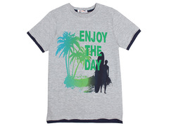 702-24 футболка детская, серая