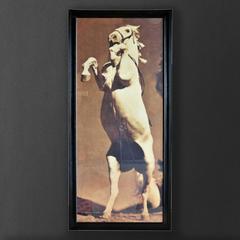 Картина Roomers Лошадь Стенли